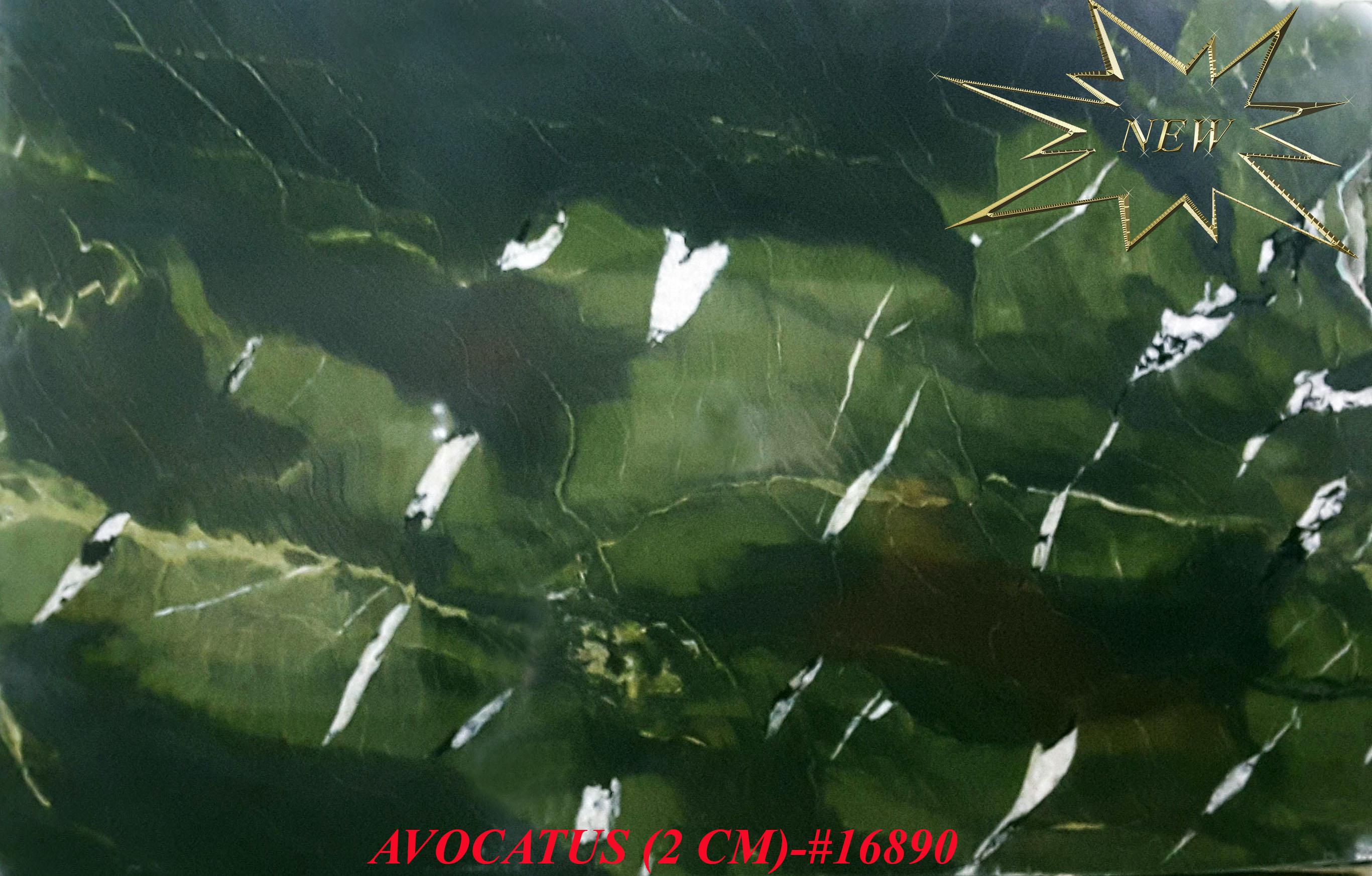 AVOCATUS (2 CM)-#16890-S
