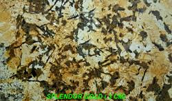 SPLENDOR GOLD (3 CM)-#23041-16