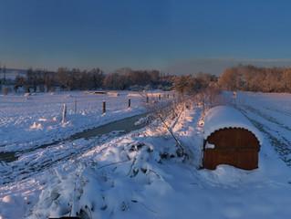 Un matin d'hiver au Moulin de la Forge - Jeudi 8 Février 2018