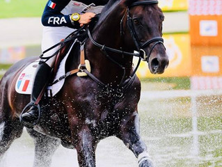 Sidney Dufresne et Trésor Mail sélectionnés pour les Jeux Equestres Mondiaux (JEM) à Tryon (USA)