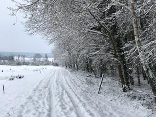 Le Moulin de la Forge sous la neige - Mercredi 7 Février 2018