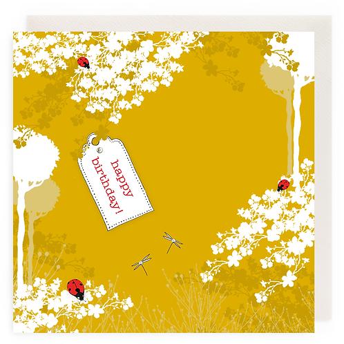 Ladybird Field