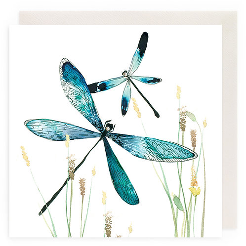 Peaceful Dragonflies