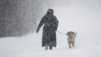 Walking dog in winter.jpg