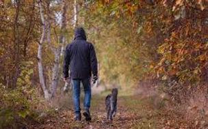 spacer z psem 1.jpg