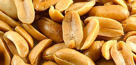 p.nuts.jpg