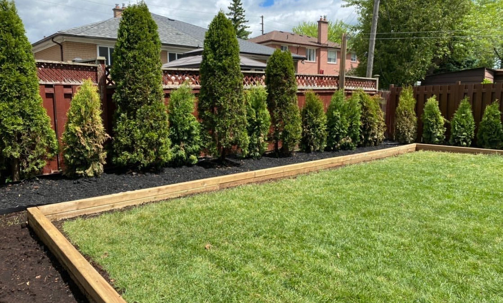 Extended Garden bed and Tree fence