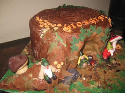 torta gnomi 010