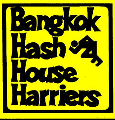 log BH3 yellow.jpg
