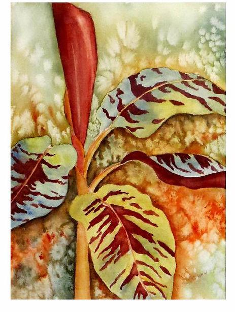 banana plantweb.jpg