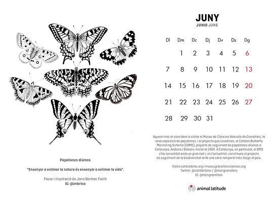 JUNY 2021 AAL DESPERTA IMBRICA.jpg