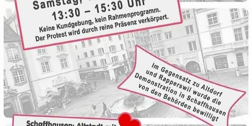 Demonstration Schaffhausen