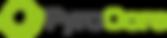PyroCore Logo.png
