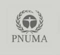 pnuma.png