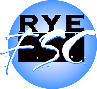 logo_0001_Layer-6.png