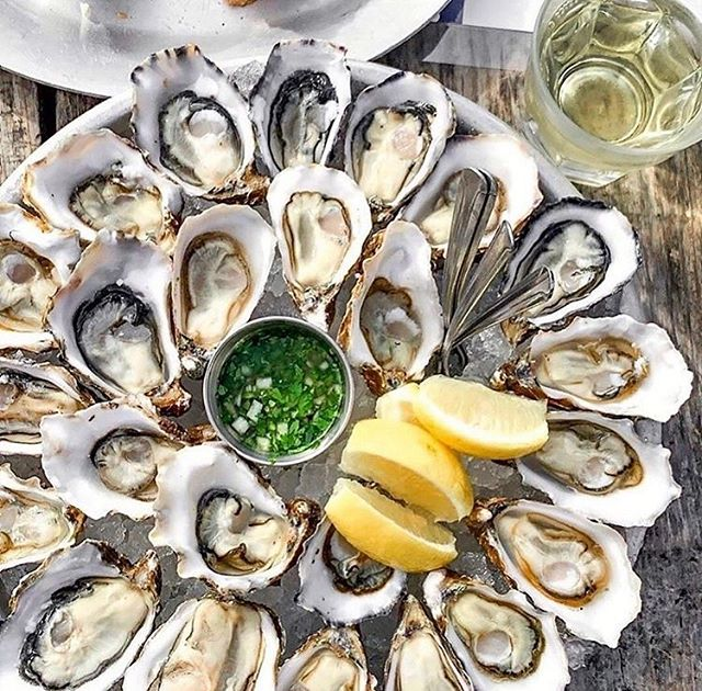 Oysters always make events great