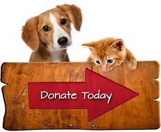 Dog donate 4.png