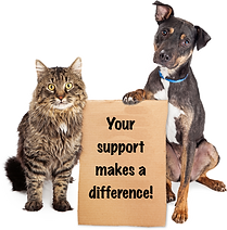 Dog donate 5.png