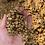 Thumbnail: Colombia Villa Betulia Honey - Micro Lot