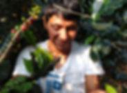 Amadeo harvesting .jpg