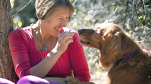 Ever Wished Your Dog Could Talk?