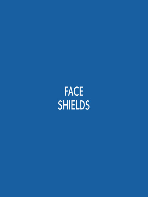 TYPE PANEL Face Shields.jpg