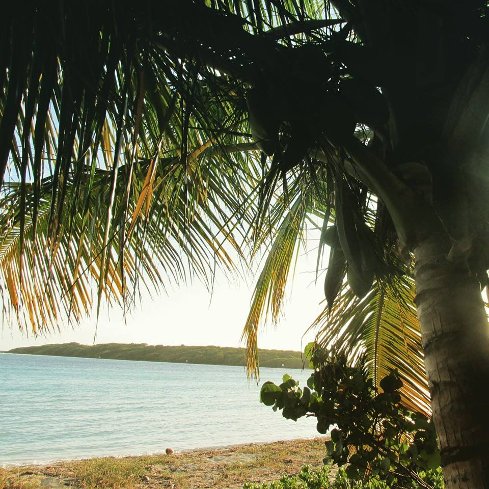 Vieques Islands