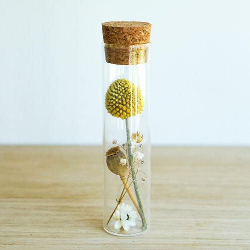 Organic dried flowers in glass tube # 5