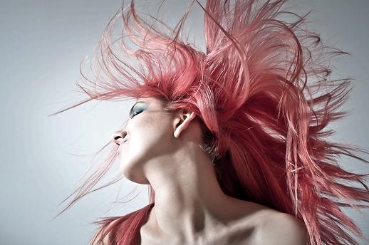 pink-hair-1450045_1920-u4594-fr.png