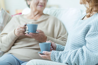 Elderly lady and carer chatting over Tea