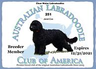 Australian Labdradoodle Club of America