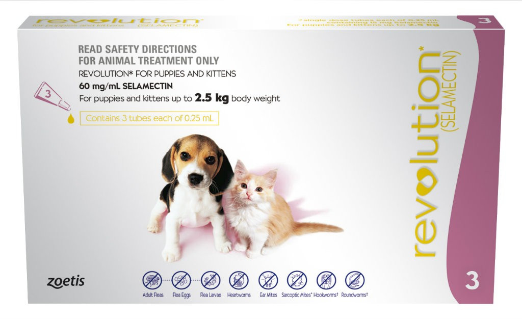 Revolution Mauve for kittens & puppies