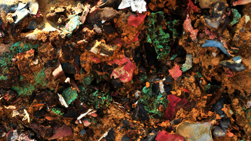 Residues and Remains 6