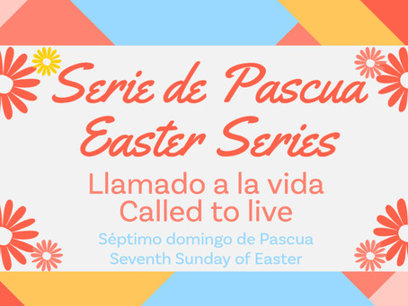 Séptimo domingo de Pascua: Llamado a la vida