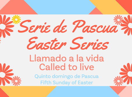 Quinto domingo de Pascua: Llamado a la vida