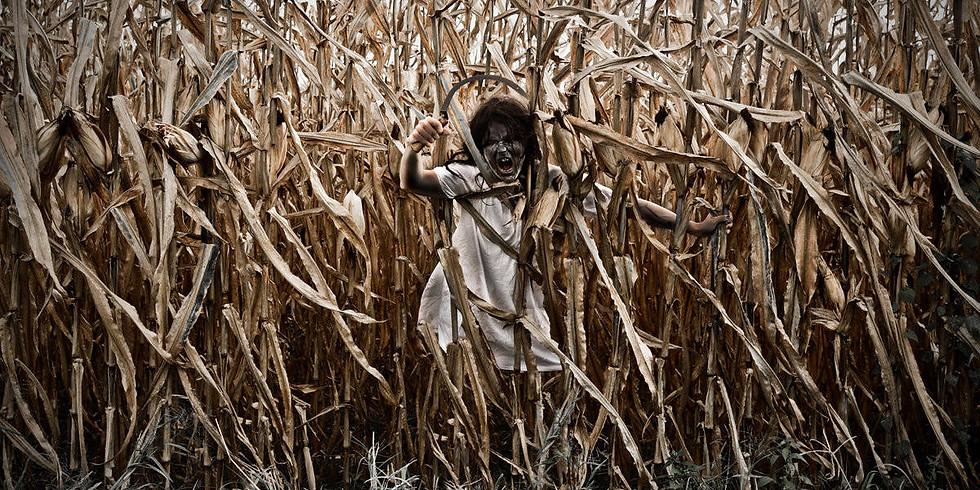 3rd Annual Haunted Corn Maze @ Andreotti Family Farms