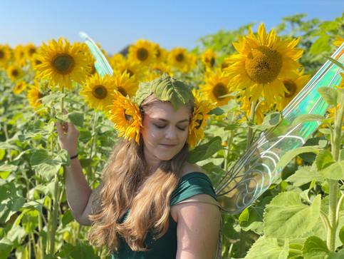 Farm to table high tea fairy festival in the sunflowers