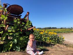 Farmer Scarlett