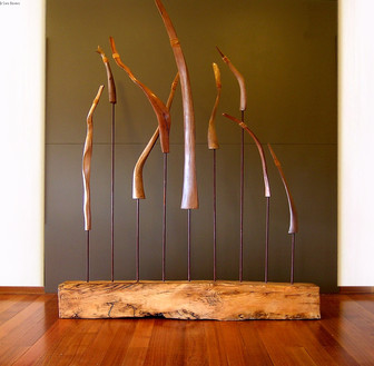 """""""Elements"""" by Sara Bowers. Diodar Cedar, Steel, Red Box and Yellow Box Roots, Leather70cmx1.7mx2.2m"""