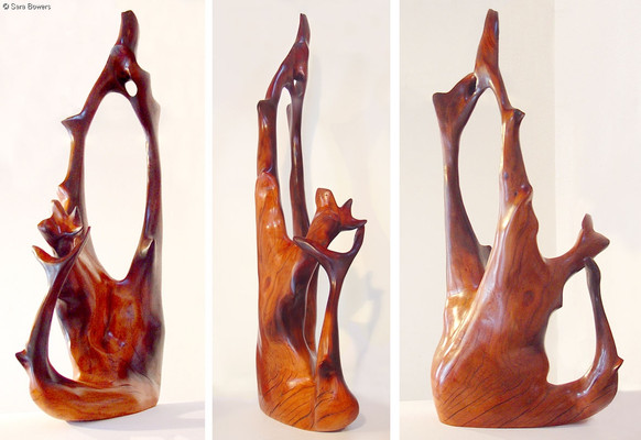 """Duet"" by Sara Bowers. Red Box (Eucalyptus intertexta) 65x45x100cm"