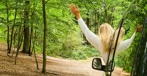 Ich baue mir einen Minivan|Citroen Berlingo XL|Planung,Vorbereitung und Ausbau vom Camper 2020