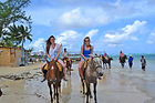 Jamaica tours- horse back riding