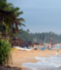Sri Lanka-8.jpg