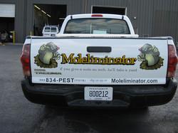 mole rear.jpg