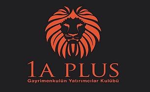 1A-Plus.jpg