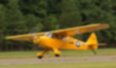 Tailwheel rental, training and endorsement in a Piper Cub Cruiser.