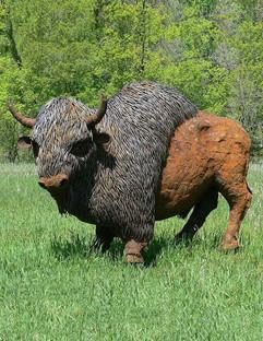 Bison - Pride of the Prairie (soon after installation)