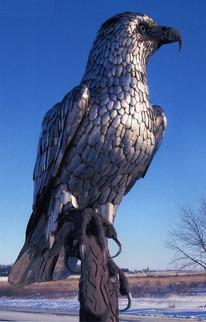 Eagle on Tree (closeup)