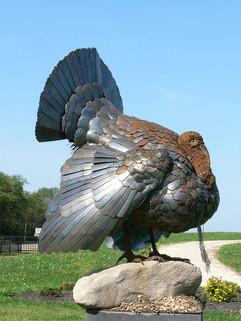 Turkey (starting to rust)