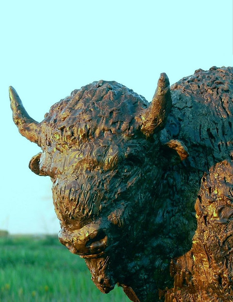 Bison Maquette (Wax closeup)
